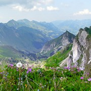 Hike the Swiss Alps
